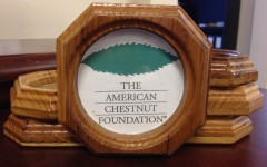 Chestnut Coasters