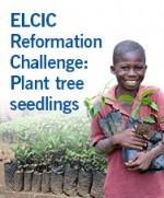 ELCIC Reformation Challenge: Tree Seedlings