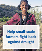 Support small-scale farmers