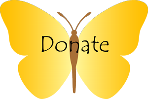 One-time Donation
