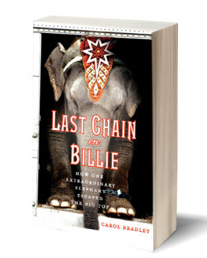 Last Chain on Billie (non-fiction)