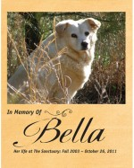 In Memory of Bella Poster