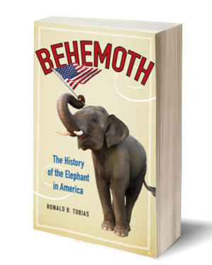 Behemoth (non-fiction)