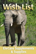 Pachyderm Pedicure - Ongoing Need - $40.00 Each