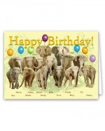 Happy Birthday Card Pack