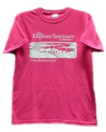 Women's Hot Pink Logo T-shirt