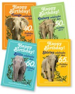 Birthday Cards (Individual)