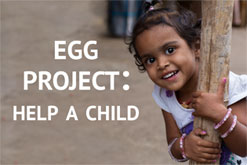 The Egg Project